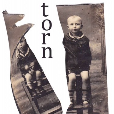What Kate's Reading — Forever Torn